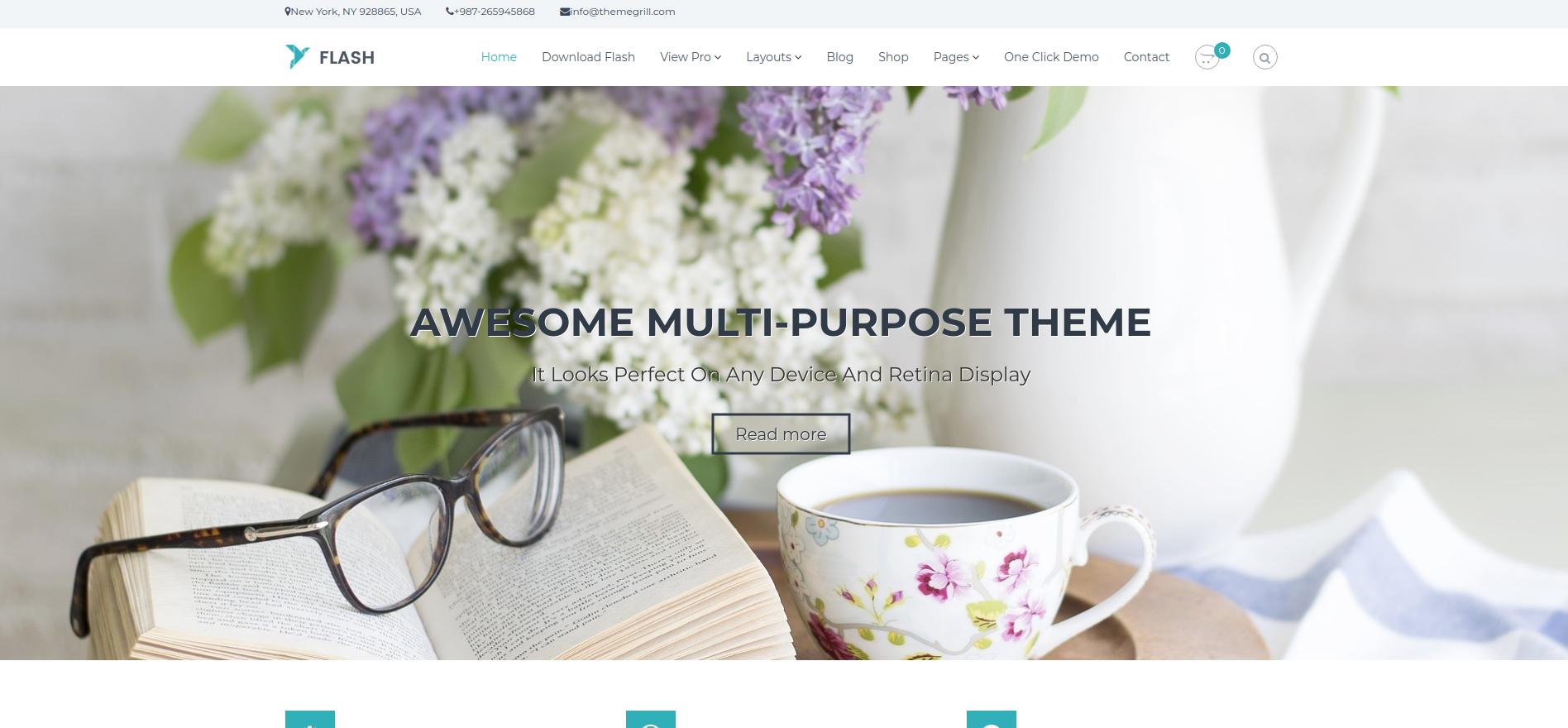 WordPress Themes : Flash